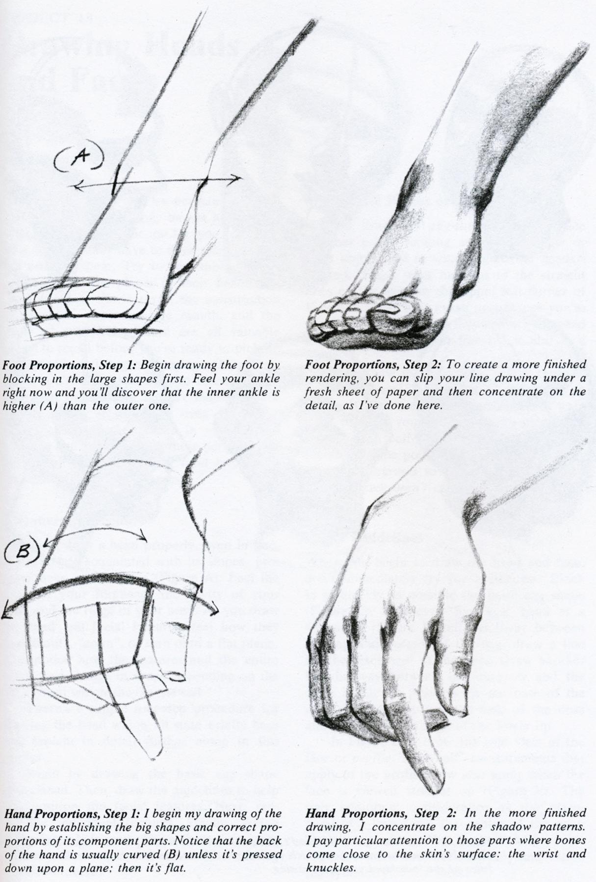Hand-n-Foot